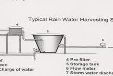 RAIN WATER HARVESTING: AN INDIGENOUS EFFORT SUSTAINED IN GUWAHATI CITY