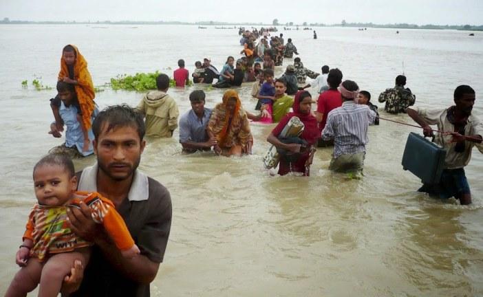 Environmental Refugees