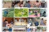 JICA Activities in India