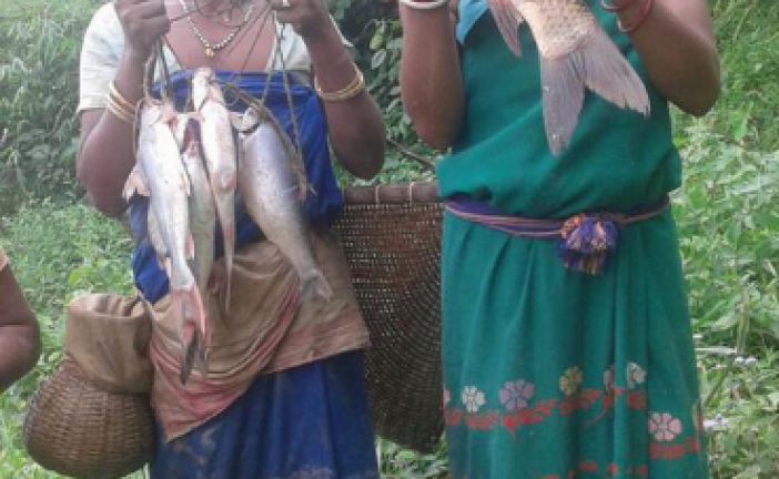 Questions raised on Digaru River ecosystem following mass DEATH of fish