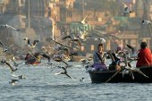 Can the Ganga have human rights?