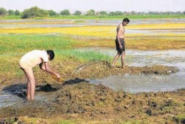 Daunting water challenges across industries