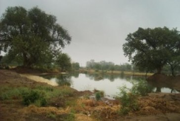 NCR lost 40% of its water bodies in 42 years: Study