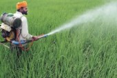Toxic pesticides still on sale across India
